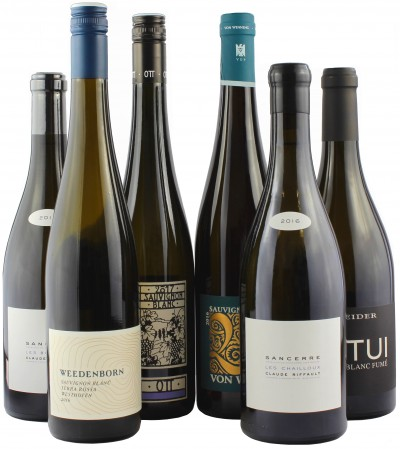 Wein Direktimport Probierpaket  - 6er Paket mit hochfeinen Sauvignon Blanc